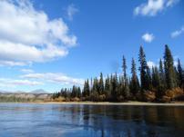 Das Ufer ist gesaeumt von den langen, duerren Nadelbaeumen, die typisch fuer unsere borealen Nadelwaelder sind.